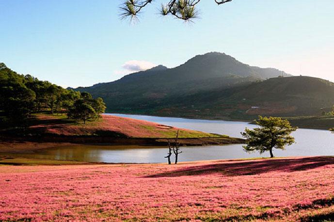 Lac de Suoi Vang, Dalat, Vietnam