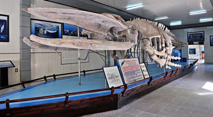 Musée Océanographique, Nha Trang, Vietnam