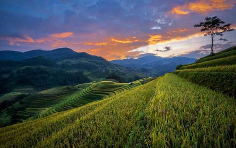 Randonnée au Nord du Vietnam au cœur du pays des H'mong en 8 Jours