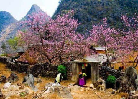 Hauts-plateaux au Nord-Est du Vietnam en 16 jours